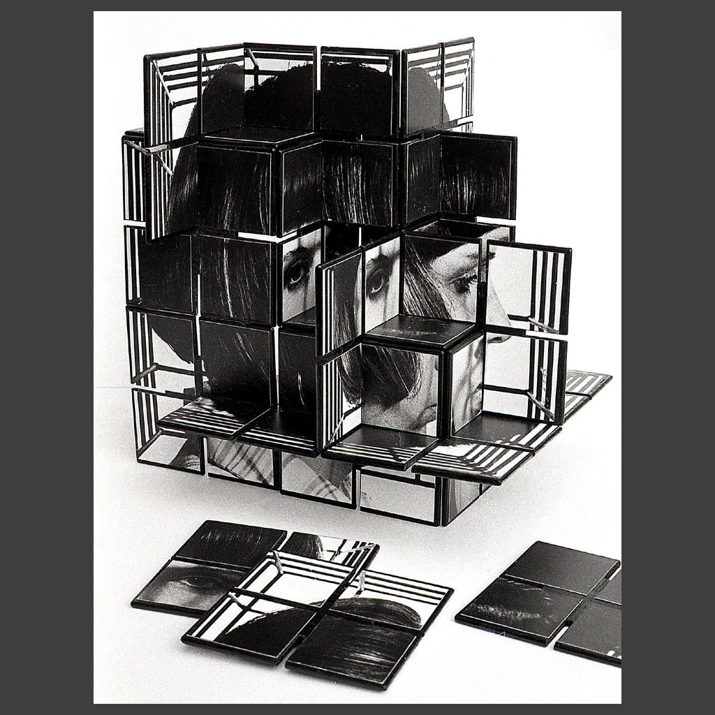 Peter Banks Caged Head Jigsaw 4